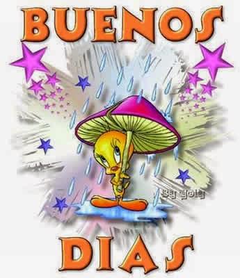Buenos Dias 63