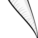 letra-Z-Zanahoria-para-colorear