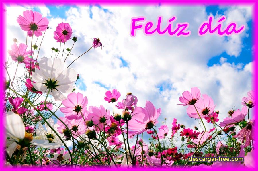 feliz dia con flores