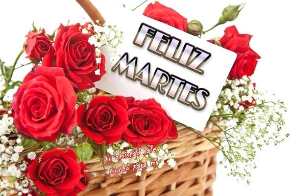 feliz martes con rosas