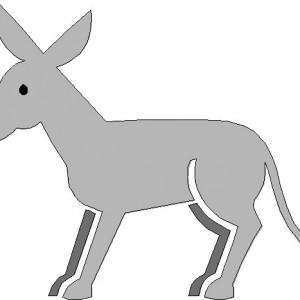 asno-burro