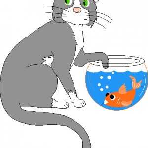 gato-pez